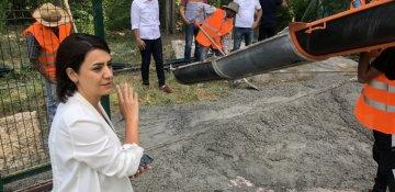 Millət vəkili ağac qətliamını dayandırdı - FOTO / VİDEO